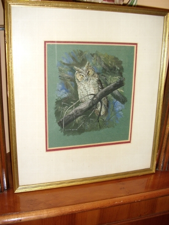 Antique PASTEL WATERCOLOUR & GOUACHE OF A YOUNG TAWNY OWL PERCHED ON A BRANCH