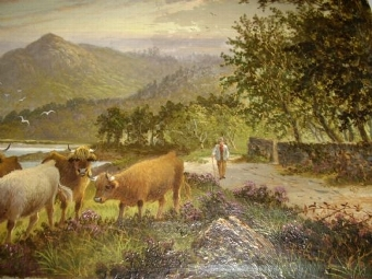 Antique OIL PAINTING ON CANVAS OF HIGHLAND CATTLE GLENCLOY ISLE OF ARRAN BRODICK SCOTLAND C1897