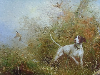 Antique SUPERB LARGE OIL PAINTING ON CANVAS OF A POINTER FLUSHING OUT PHEASANTS IN THE UNDER-GROWTH / PAINTED BY SOUGHT AFTER ARTIST FRANK JASON & PRESENTED IN THE ORIGINAL DECORATIVE GILT SWEPT FRAME / SIZE 40 X 28 INCHES