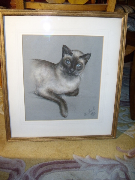Antique PROFESSIONAL PASTEL & GAUCH DRAWING OF A SIAMESE CAT  19 X 21 INCHES
