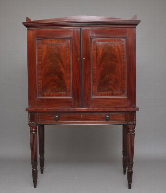 Antique Early 19th Century mahogany collectors cabinet