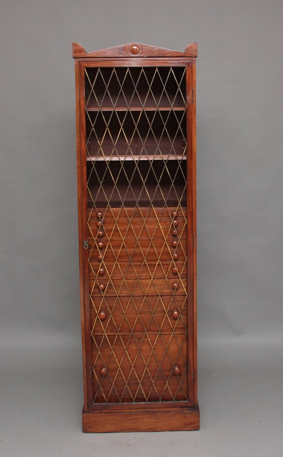 19th Century mahogany collectors cabinet