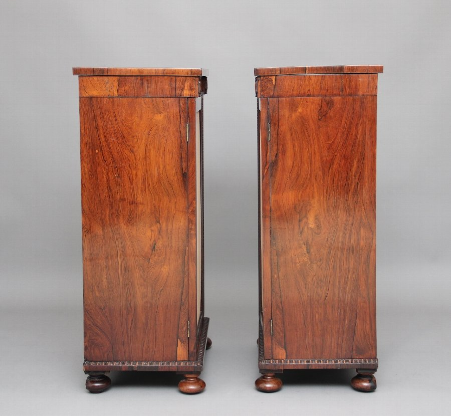 Antique Pair of early 19th Century rosewood pedestal cabinets