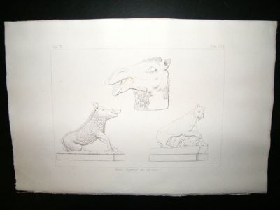 Art of The Vatican: 1829 Lot of 6 Prints. Italy