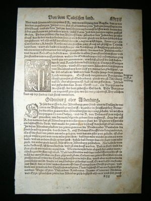 Antique Munster: C1570 Woodcut.  Aldenburg, Germany.