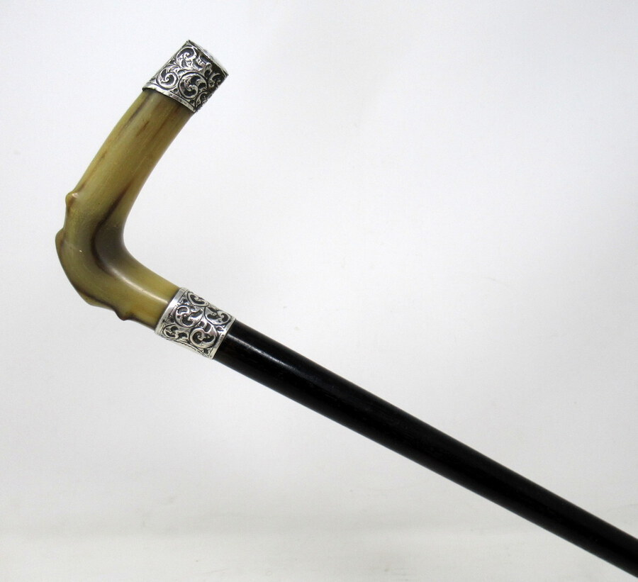 Antique Antique Walking Stick Cane Ebonised Sterling Silver Cow Horn Handle 1906