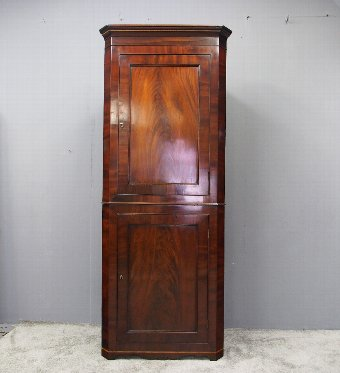 Antique William IV Mahogany Double Corner Cupboard