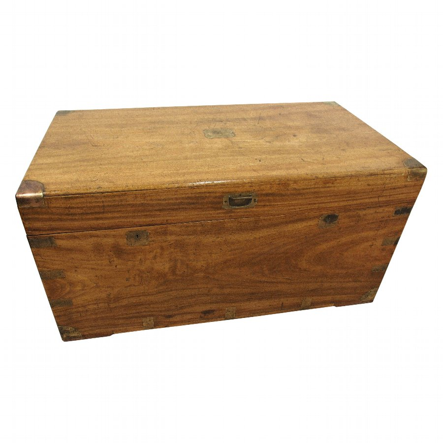 Solid Camphor Wood Travelling Trunk