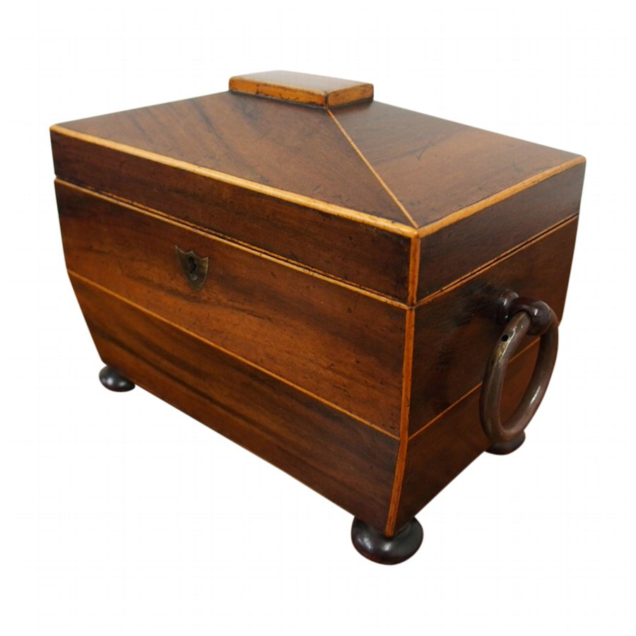George III Boxwood and Inlaid Tea Caddy
