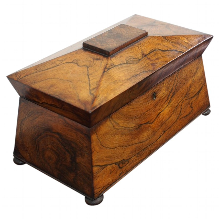 Large William IV Rosewood Tea Caddy