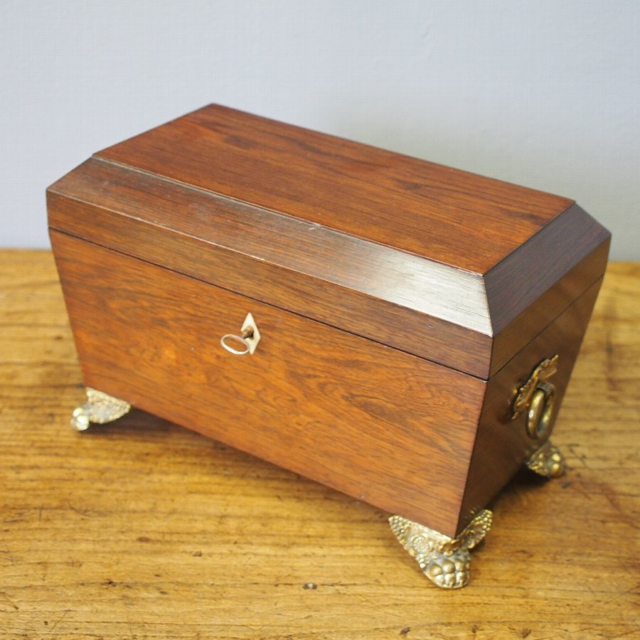 George IV Rosewood Tea Caddy