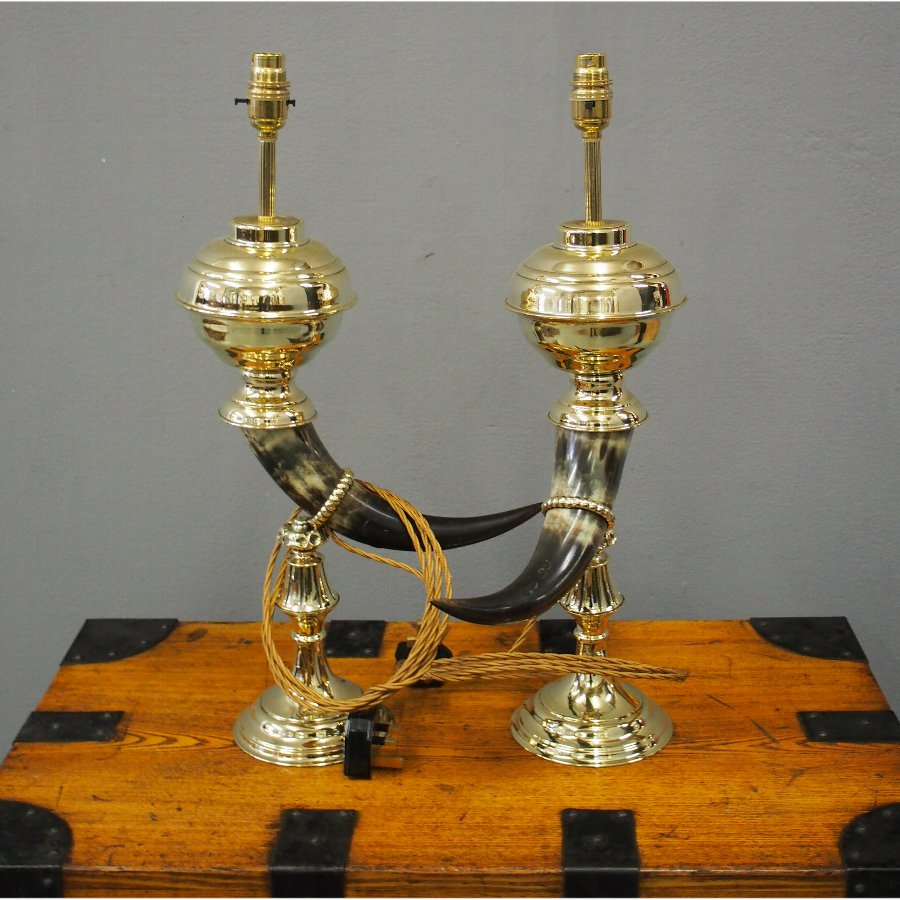 Pair of Bovine Horn and Brass Lamps