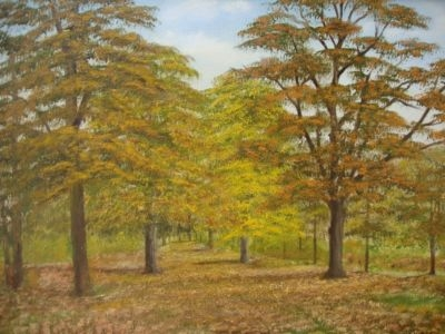 Antique BEAUTIFUL ORIGINAL NORFOLK WOODLAND LANDSCAPE OIL PAINTING BY 'FRANCIS VINCENT'