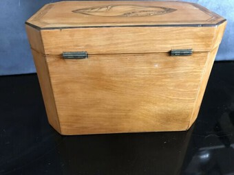 Antique Tea Caddie Satinwood With Shell Inlays Georgian