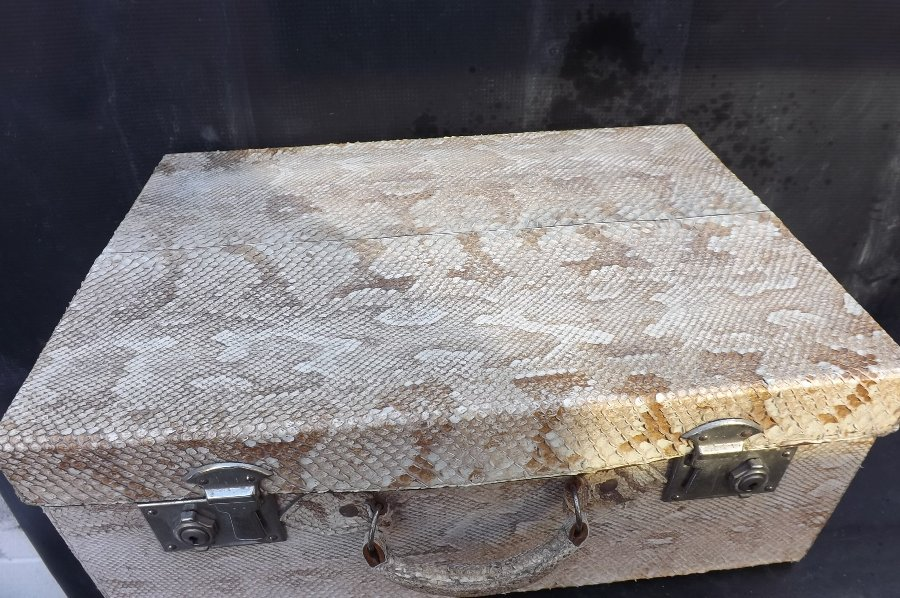 Antique Suite case in snake skin of the Python.