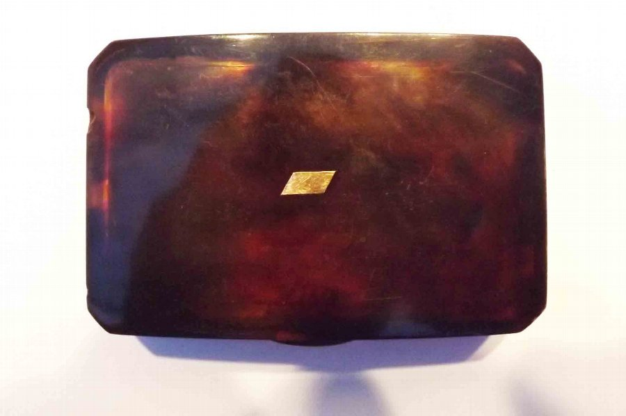 Tortoise shell, hip snuff box