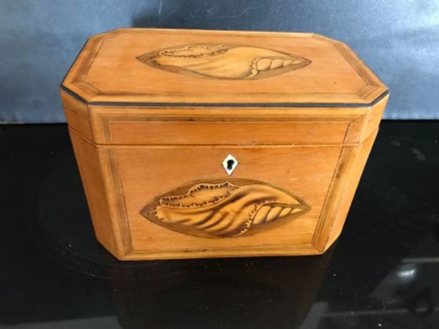 Tea caddy Satinwood with shell inlays