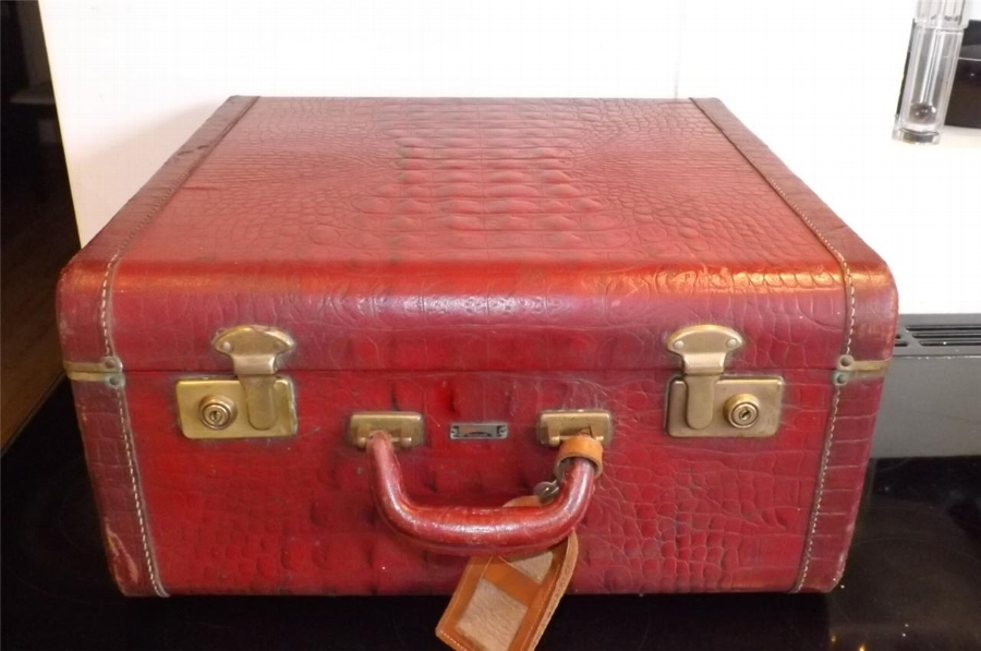 Suitcase Anaconda snake's skin brass locks vintage item.