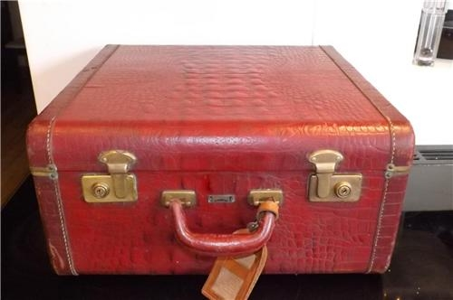 Suitcase reptiles skin brass locks vintage item.
