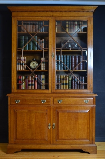 Antique Late Victorian Bookcase sn2460