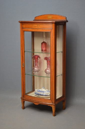 Antique Edwardian Display Cabinet Sn2833