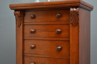Antique Victorian Mahogany Wellington Chest Sn2977