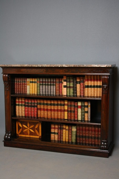 Antique William IV Rosewood Bookcase sn2355