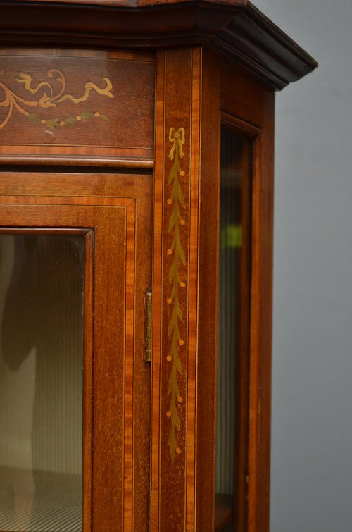 Antique Edwardian Wall Hanging Display Cabinet Sn2871