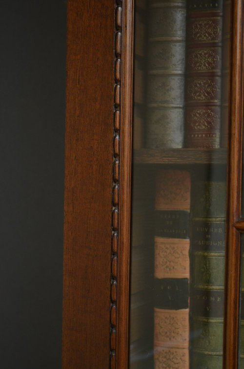 Antique Tall and Slim Mahogany Bookcase Sn3501