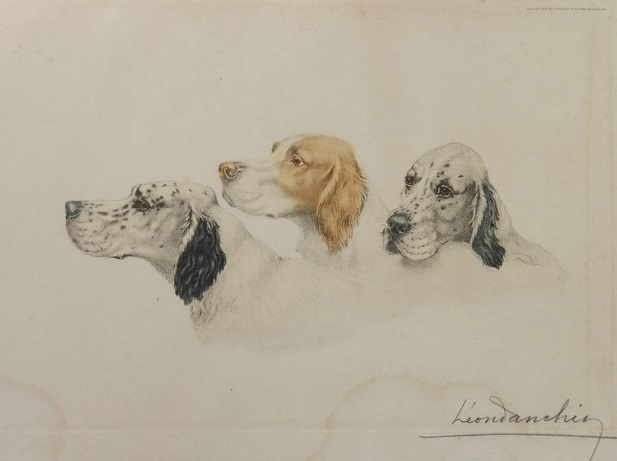 Antique Etching of Dogs by Leon Danchin French 18871938 Setters