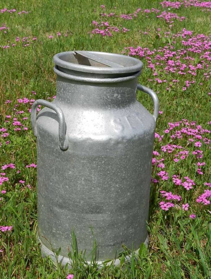 Vintage French Milk Churn
