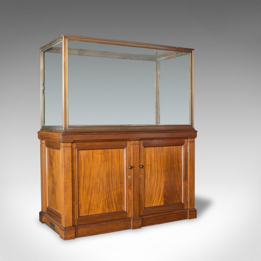 Antique Showcase Cabinet, English, Walnut, Bronze, Display, Museum, Circa 1900