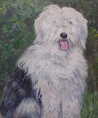 Antique Superb Dorcie Sykes Oil Painting Portrait Of An Old English Sheepdog (Dulux Dog)