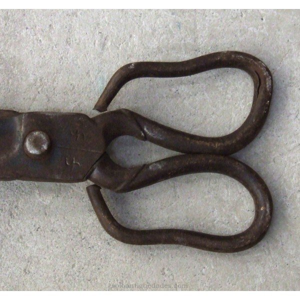 Antique Small iron shears recorded
