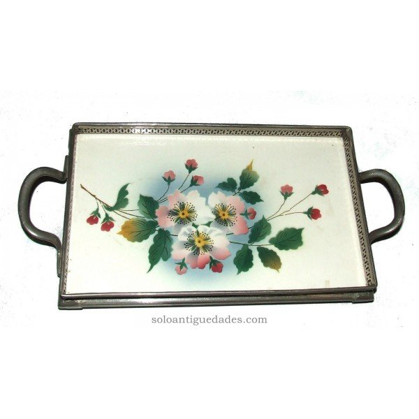Antique Rectangular tray with plant