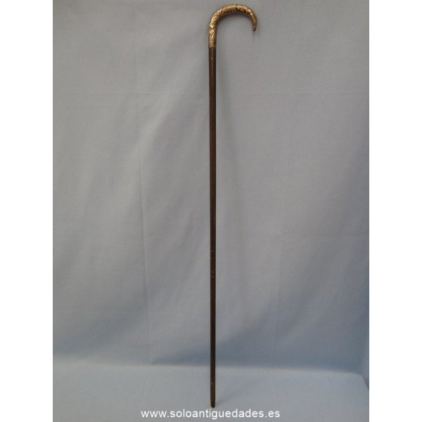 Antique Cane
