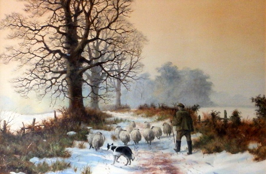 Original Oil of Canvas By Renowned William (Bill) Makinson 'Taking The Flock'