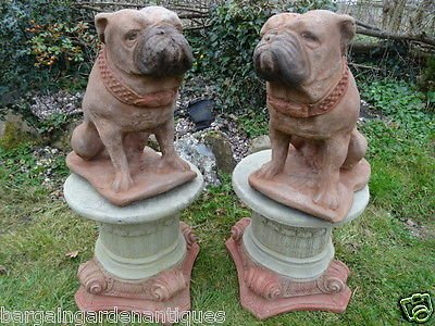 2 Vintage Matching Lifesize Hand Finished Bulldog Stone Garden Statues On Round Scroll Plinths