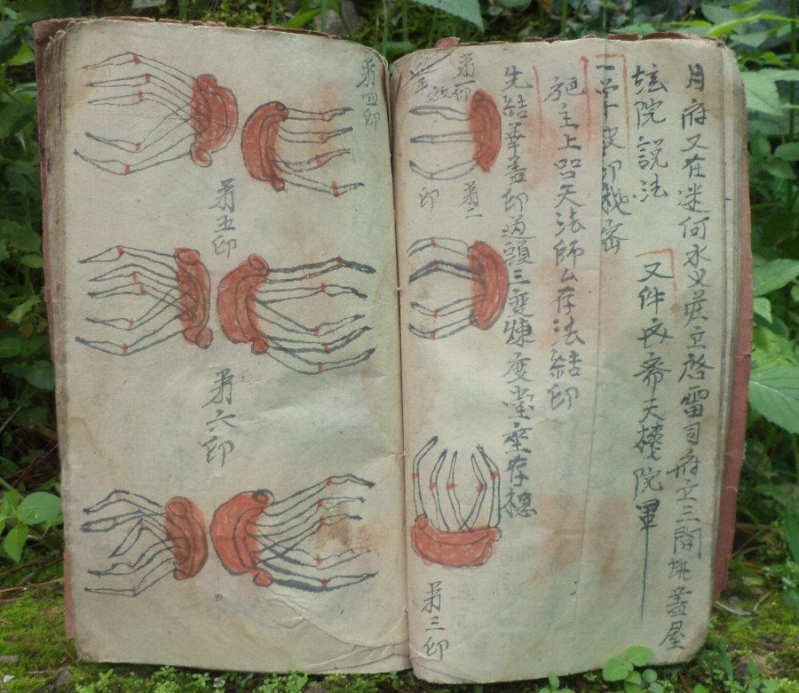 Divination Book from Vietnam