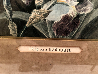 Antique WATERCOLOUR signed H. SCHUBEL