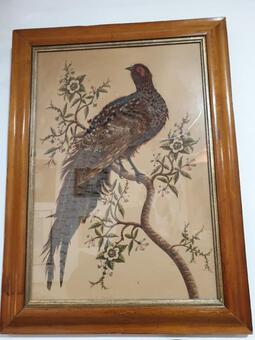 Antique Period XIXth Rare Table Bird In Natural Feathers, Watercolor And Enhanced With Gouache