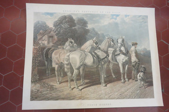 Antique 19th CENTURY ENGLISH PRINT