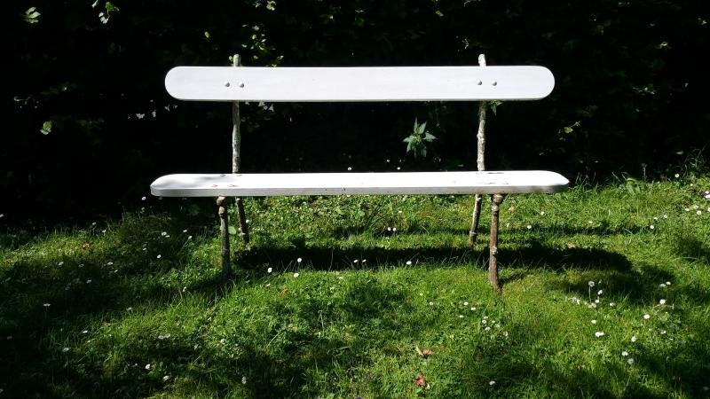 French antique garden benches