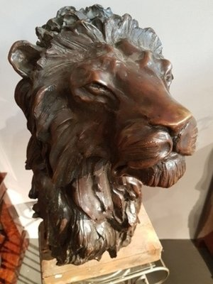 Lion from José Maria David .Fonte Chapon