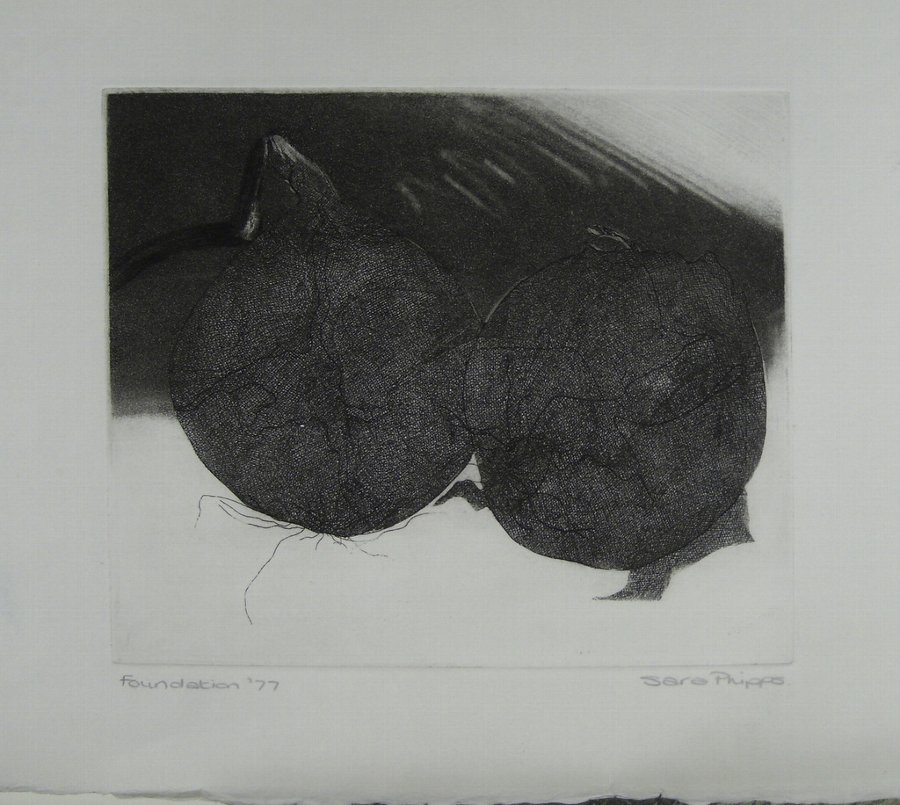 ONIONS. ETCHING BY SARA PHIPPS 1977