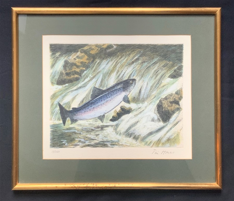 Original 'Tim Hawes' Signed Limited Edition Coloured Print 19/250 Fishing Salmon