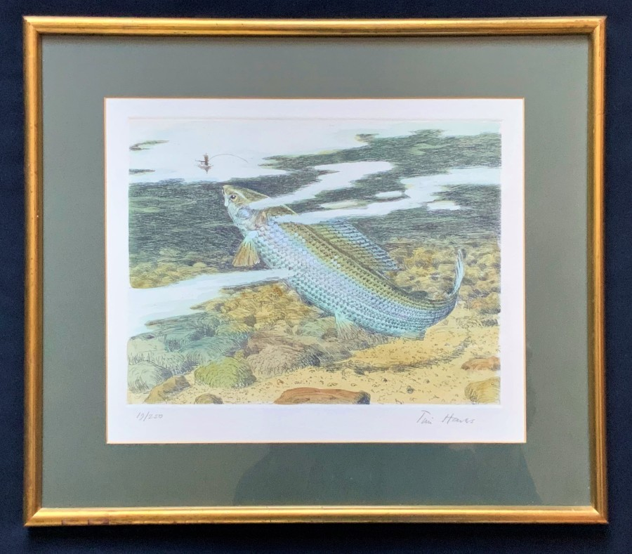 Original 'Tim Hawes' Signed Limited Edition Coloured Print 19/250 Salmon Fishing