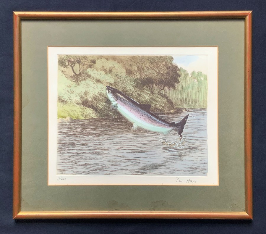 Original 'Tim Hawes' Signed Ltd Edition Coloured Print 19/250 Leaping Salmon