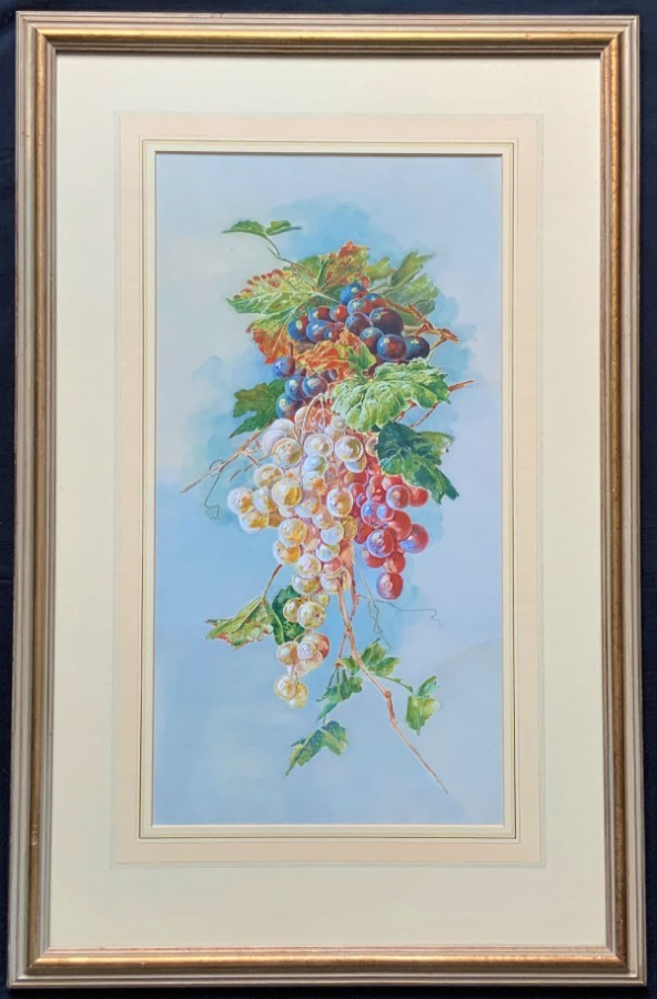 Exceptional Original Vintage 20thc Still Life Grapes study Watercolour Painting