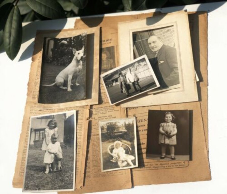 Antique Vintage Dog Children Llandudno Photo Photograph Collection Bulk Job Lot